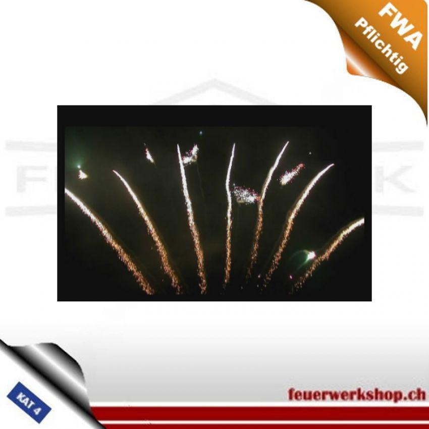 SC-12 Single Row - Fächer Feuerwerkskörper