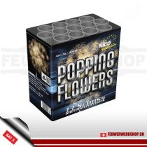 13 Schuss-Bombetten-Feuerwerksbatterie *Popping Flowers*