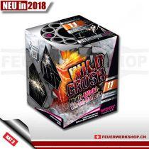 Feuerwerk - 1 August -  Batterie *Wild Crush*